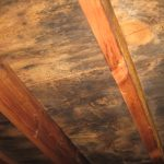 Mold contaminated roof decking is cheaper to replace while changing the roof than hiring mold remediation professional